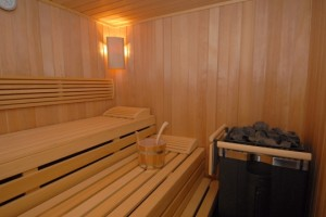 de traditionele Finse sauna