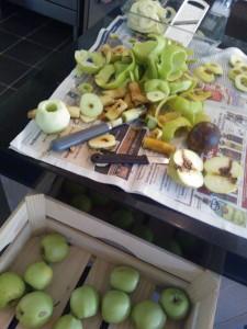 Snoeien doet groeien! Alleen gave appels gaan als schijfjes in de vriezer voor de appeltaart. En de gebutste gaan in de moes. Verder ook een goed jaar voor de appelworm blijkbaar?